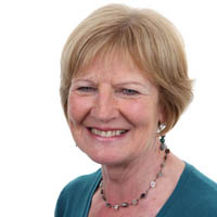 Cllr Lynne Devine (Chair)